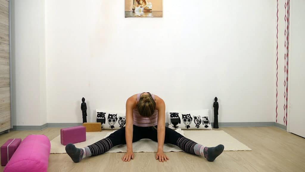 Yin Yoga Element Erde - Magen und Milz - Libelle
