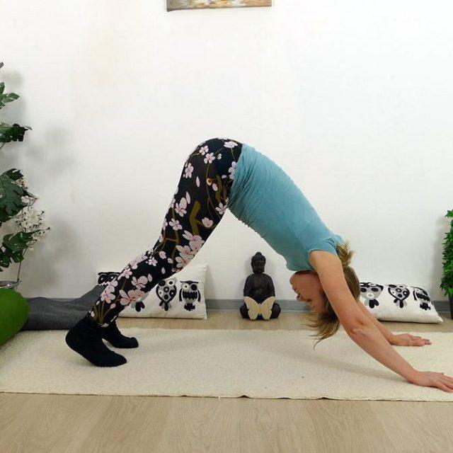 Yin Yoga Holz Herabschauender Hund