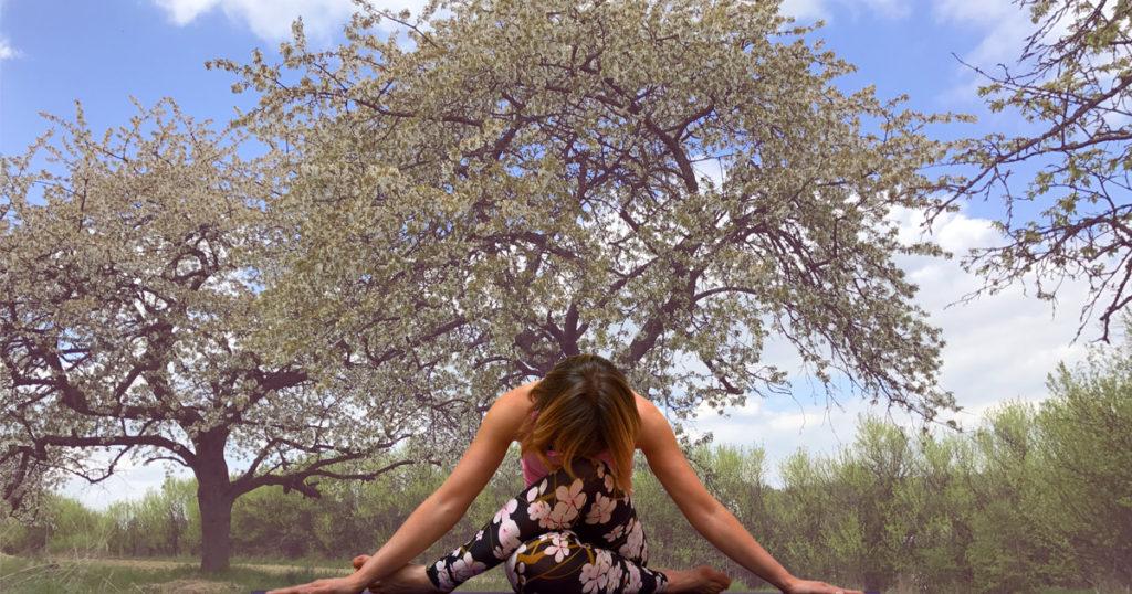 Yin Yoga Element Holz
