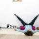 Yin Yoga Immunsystem 08