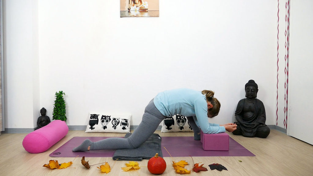 Yin Yoga Dragon Low
