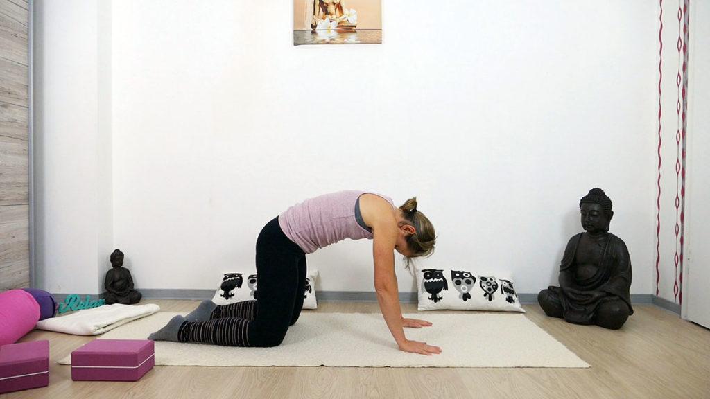 Yin Yoga am Morgen: Katze
