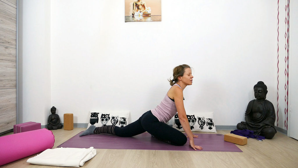Yin Yoga Schwan
